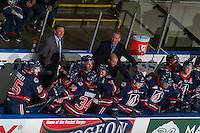 KELOWNA, CANADA - MARCH 26: The Kamloops Blazers celebrate a goal against the Kelowna Rockets on March 26, 2016 at Prospera Place in Kelowna, British Columbia, Canada.  (Photo by Marissa Baecker/Shoot the Breeze)  *** Local Caption *** bench; celebrate;