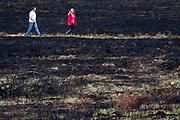 Walkers on scorched heathland. Upton Heath, Dorset, UK.
