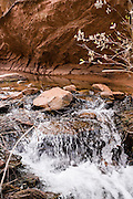 A stream flows in Negro Bill Canyon, on BLM federal land near Moab, Utah, USA. The Navajo Sandstone of Morning Glory Natural Bridge spans 243 feet, making it the sixth largest rock span in the United States.