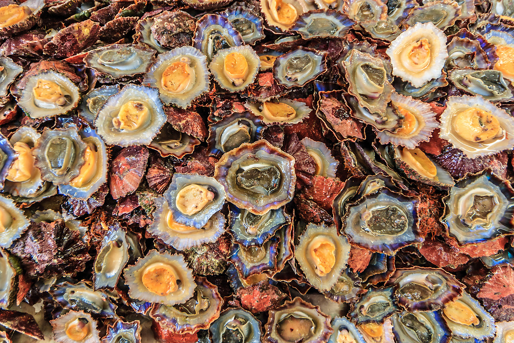 Mussels on Madeira Fish Market.