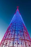 USA-Colorado-Denver-Mile High Tree