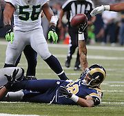 Football - NFL- Seattle Seahawks at St. Louis Rams.St. Louis Rams wide receiver Austin Pettis (18) holds the ball aloft after making a good catch in the second quarter at the Edward Jones Dome in St. Louis.  One of the Seahawks players reaches for the ball (right) and swatted it out of Pettis' hand a moment later. The Rams defeated the Seahawks, 19-13.