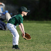 A young fielder prepares for a play during the Norwalk Little League baseball competition at Broad River Fields, Norwalk, Connecticut. USA. Photo Tim Clayton