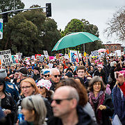 The Women's March in Oakland, CA, January 21, 2017.