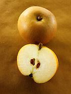 russet apple