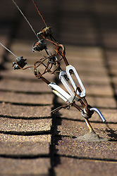 Guy wires supporting an unseen television antenna mounted on the roof of a home