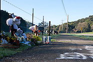 Isaac Brott Novato Roadside Memorial 2011