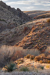 Sunset on Gallina Spring and Palomas Creek, Ladder Ranch, west of Truth or Consequences, New Mexico, USA.