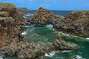 Cliffs on coast of the Atlantic Ocean<br /> Elliston<br /> Newfoundland & Labrador<br /> Canada