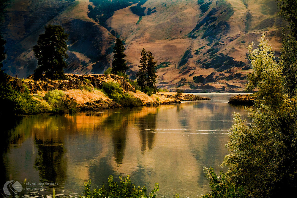 Not far from The Dalles, Oregon backwaters of the Columbia river