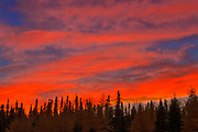 CLouds at sunset over the boreal forest<br />Near Longlac<br />Ontario<br />Canada