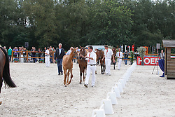 Nationale veulenkeuring springveulens<br /> KWPN Paardendagen Ermelo 2010<br /> © Dirk Caremans