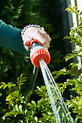 A hose nozzle recommended for hand watering during water restrictions.