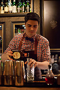 A young mixologist makes cocktails in the award winning cocktail bar: Ona Mor, Roonstrasse, in the vibrant pocket of Neustadt Sud, Cologne.