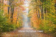 64776-01304 Road in fall color Schoolcraft County Upper Peninsula Michigan