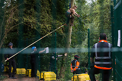 Denham, UK. 8th September, 2020. HS2 security guards and National Eviction Team enforcement agents monitor a HS2 Rebellion activist climbing a tree in Denham Country Park in order to try to protect it from works for the HS2 high-speed rail link. Anti-HS2 activists continue to try to prevent or delay works on the controversial £106bn project for which the construction phase was announced on 4th September from a series of protection camps based along the route of the line between London and Birmingham.