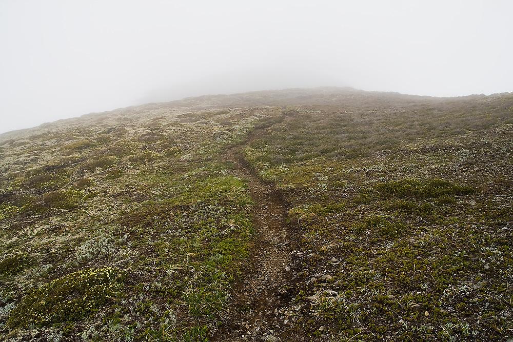 A trail disappears into the fog below below Tomyhoi Peak, Mount Baker Wilderness, Washington.