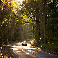 Sunlight catches a car as it winds through country roads in the Daylesford-Macedon Ranges area of Victoria, Australia.