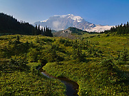 Mt Rainier towers above a late summer meadow with a meandering stream, a lone cloud drifts by the peak to give a sense of scale.