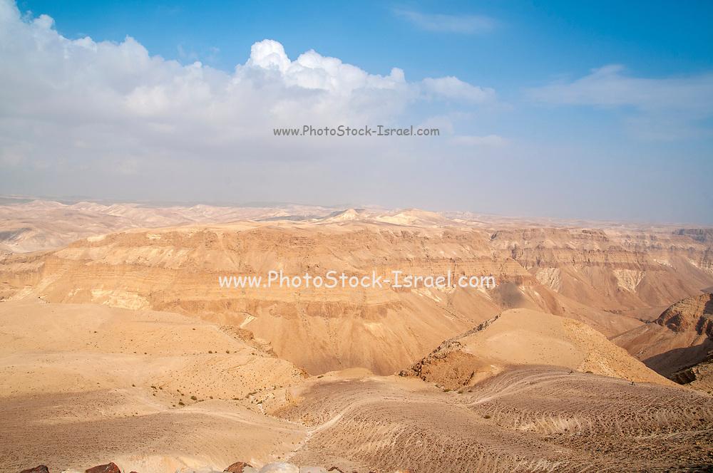 Negev Desert Landscape Panorama. Photographed in Nahal  Tzeelim [Tze'eelim Stream] in December