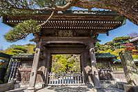 Hasedera Gate - Hase-dera Temple in Kamakura is officially named Kaiko-zan Jisho-in Hase-dera but commonly called Hase Kannon.  Hase-Dera has landscaped Japanese gardens, a giant prayer wheel, jizo caves, a bamboo grove, and a vegetarian restaurant up the hill with a birds-eye view of Kamakura and the Shonan Coast. Hase-dera is famous for its massive wooden statue of Kannon - a treasure of Japan.  Originally belonging to the Tendai sect of Buddhism, Hase-dera became an independent temple of the Jodo sect of Zen Buddhism.