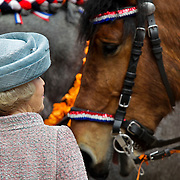 NLD/Middelburg/20100430 -  Koninginnedag 2010,Beatrix met een van de ringsteekpaarden
