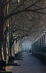 London, February 24th 2016. A runner jogs along Cheyne Walk beside the River Thames as the sun rises on a chilly but clear morning in London. ©Paul Davey<br /> FOR LICENCING CONTACT: Paul Davey +44 (0) 7966 016 296 paul@pauldaveycreative.co.uk runners jog along Cheyne Walk beside the River Thames as the sun rises on a chilly but clear morning in London. ©Paul Davey<br /> FOR LICENCING CONTACT: Paul Davey +44 (0) 7966 016 296 paul@pauldaveycreative.co.uk
