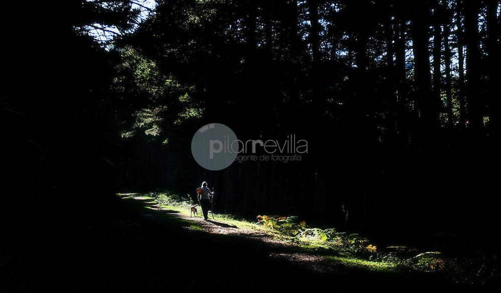 Buscando setas en el bosque. La Rioja ©Daniel Acevedo / PILAR REVILLA