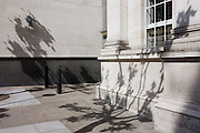 Shadows of trees on CCTV camera wall behind National Portrait Gallery.