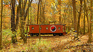 Red Caboose in a yellow wood , Driftless area. Color photo taken October 23, 2019.