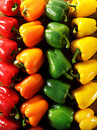 Mixed red, green, yellow & orange fresh bell peppers photos, pictures & images