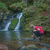 A hiker examines a dragonfly by a pool as Cataract Creek pours between moss, ferns and lush undergrowth on the northwest slopes of Mount Tamalpais in Marin County, California.