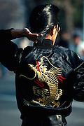 Japanese rocker at Tokyo park, Japan
