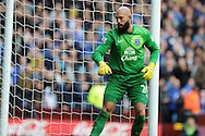 Everton goalkeeper Tim Howard  in action.Barclays Premier League, Aston Villa v Everton at Villa Park in Aston, Birmingham on Saturday 26th Oct 2013. pic by Andrew Orchard, Andrew Orchard sports photography,