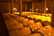 The very dramatic newly built underground barrel aging cellar under the winery, with rows of barrels. In the walls and in the floor there are oval openings that show the soil structure and the underground river that flows underneath the winery Domaine Vignoble des Verdots Conne de Labarde Bergerac Dordogne France
