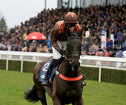 Regal Flow ridden by Sean Houlihan during the Marstons 61 Deep Midlands Grand National race at Uttoxeter Racecourse.