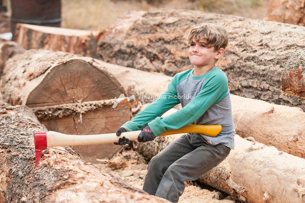 Little boy helps chop wood, McCall, Idaho. MR