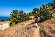 Hiker on the Torrey Pines Trail, Santa Rosa Island, Channel Islands National Park, California USA