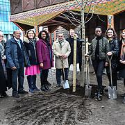 Community of Wandsworth is Planting the 8/9 Elm tree at nine Elms on 25 Feb 2019, London, UK.
