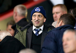 Brighton and Hove Albion's chairman Tony Bloom in the stands