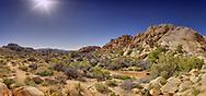 USA, California, Joshua Tree National Park.