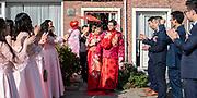 Trouwreportage Rotterdam - Breda en Dordrecht
