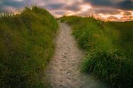 beach path at sunset - Long Beach, WA
