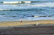 A Woman Walking Her Dog on the Beach in Huntington Beach California