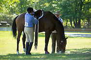 Middletown, New York - A rider saddles her horse before competing in the 70th annual Middletown Rotary Horse Show at Fancher-Davidge Park on Sept. 8, 2013.