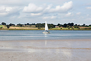 Summer landscape view of one small sailing yacht boat on River Deben estuary, from Sutton, Suffolk, England, UK