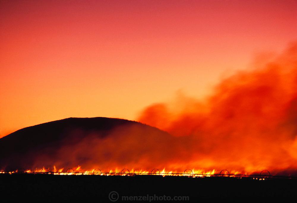 Crop residue being burned off in Tule Lake, California.
