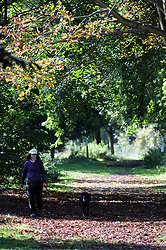 © Licensed to London News Pictures. 08/10/2013<br /> Autumn sunny weather today (08.10.2013)<br /> The sunny autumn weather continues to shine today at Footscray Meadows in Sidcup,Kent.<br /> Photo credit :Grant Falvey/LNP
