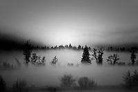 Valley fog settles into rural pastures in Teton Valley, Idaho.