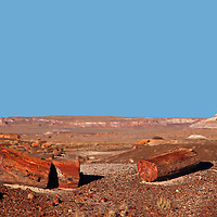 North America, USA, Arizona, Petrified Forest National Park. Crystal Forest.